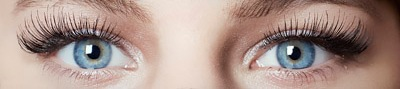 eyes lashes